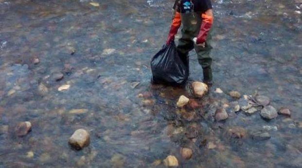 La pulizia del fiume Olona