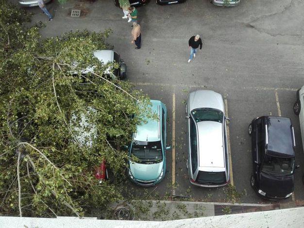 Fortunatamente nelle auto non c'era nessuno (foto Schicchi)