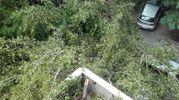 Distrutto anche pezzo di terrazzo (foto Schicchi)