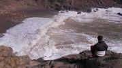 Spiaggia Cala del Leone (Foto Novi)