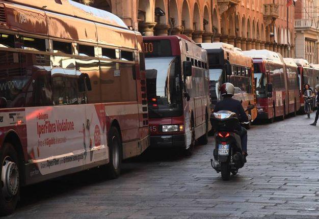La lunga fila dei mezzi pubblici  (foto Schicchi)
