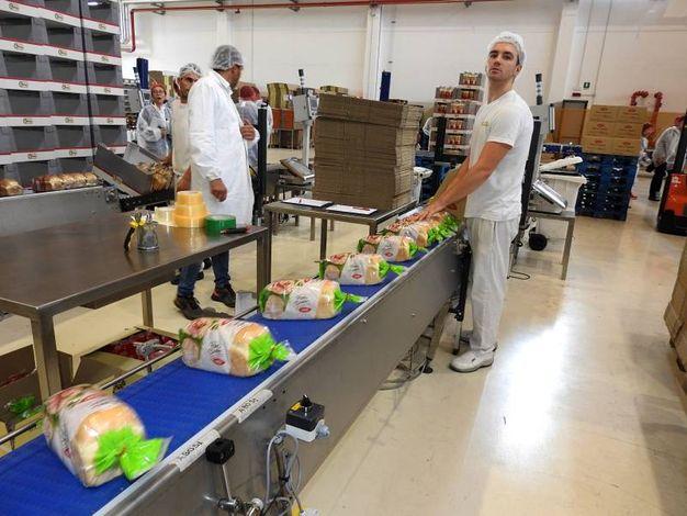 In un anno Orva produce 200 milioni di confezioni di prodotto finito (Foto Scardovi)