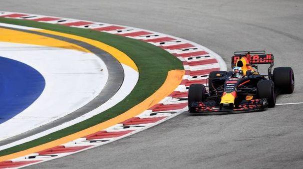 Formula 1 Gp Singapore, il pilota della Red Bull Daniel Ricciardo (Afp)
