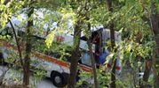 Sul posto anche un'ambulanza  (foto Labolognese)