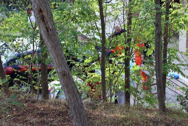 La zova dove è stata trovata la donna  (foto Labolognese)