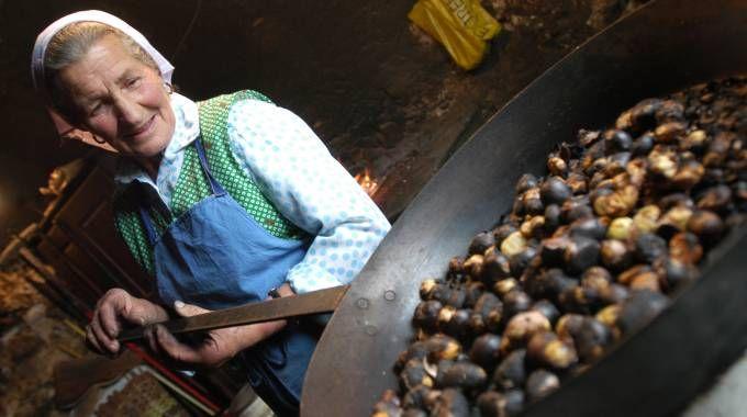 Il torggelen è la merenda tipica che i masi offrono in autunno in Alto Adige