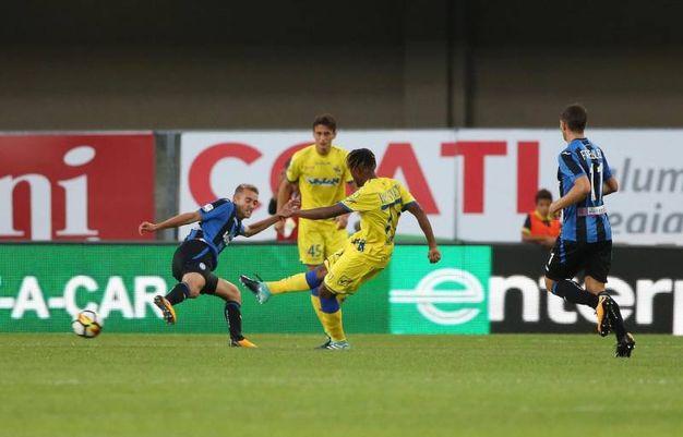 Chievo-Atalanta, Bastien segna la prima rete per il Chievo (foto Ansa)