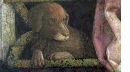 Rubino, il cane dei Gonzaga