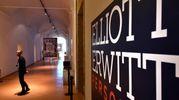 La mostra di Elliott Erwitt al San Domenico di Forlì (foto Fantini)