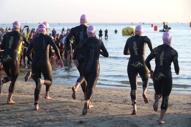 Cervia, Ironman 2017. L'entrata in acqua delle donne (Foto Zani)