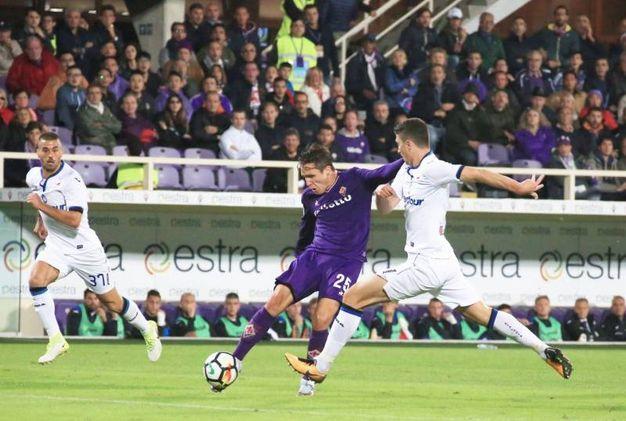 Fiorentina-Atalanta (Germogli)