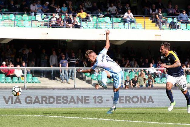 Verona-Lazio 0-2, Immobile (LaPresse)