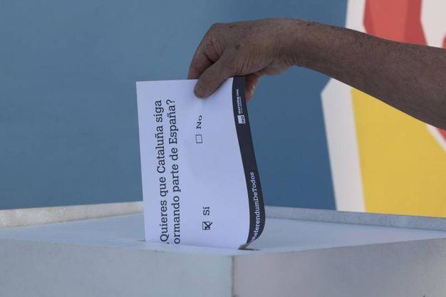 - Qual è il quesito referendario?