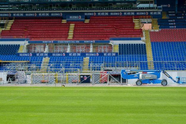 Lavori allo stadio Dall'Ara per la costruzione del palco per la visita del Papa (foto Schicchi)