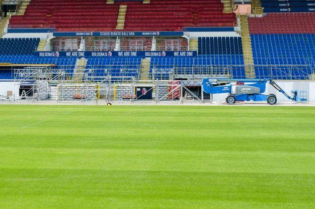 Visita del Papa, lavori in corso all'interno dello stadio per il palco che lo ospiterà (foto Schicchi)