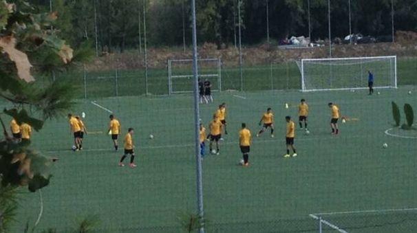 L'allenamento della Primavera dell'Ascoli senza i due calciatori sospesi