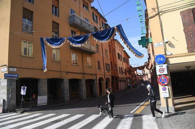 Bologna si prepara all'arrivo di Bergoglio (foto Schicchi)