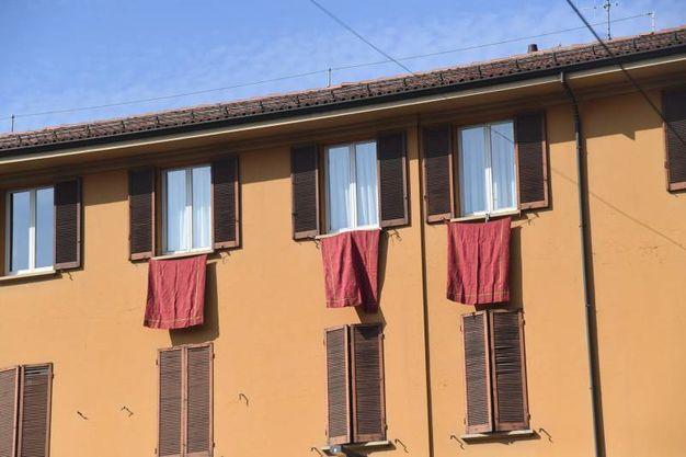 Drappi rossi alle finestre dei bolognesi (foto Schicchi)