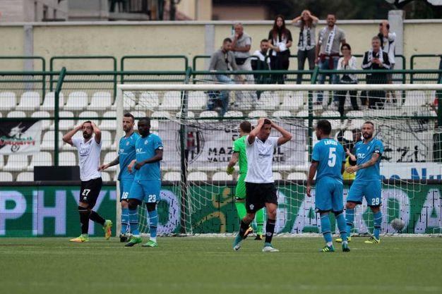 Pro Vercelli-Cesena, la partita è terminata 5-2 (foto LaPresse)