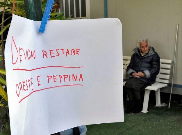 Un messaggio di solidarietà per Peppina (foto Calavita)