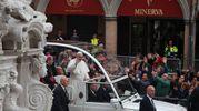La papamobile attraversa la città verso il Duomo (Foto Ravaglia)