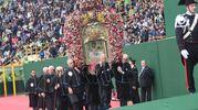 La Madonna di San Luca al Dall'Ara (Schicchi)