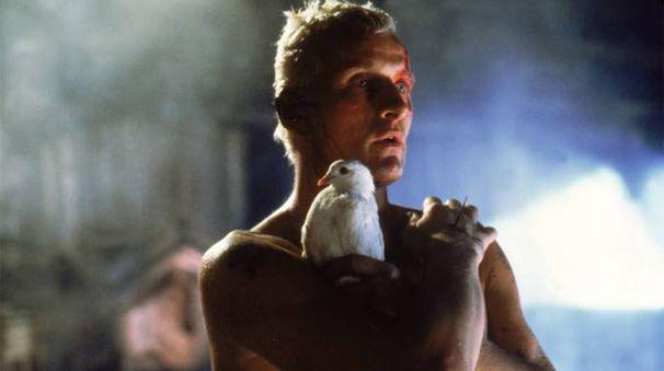 Una scena di 'Blade Runner' (1982) – Foto: Warner Bros.