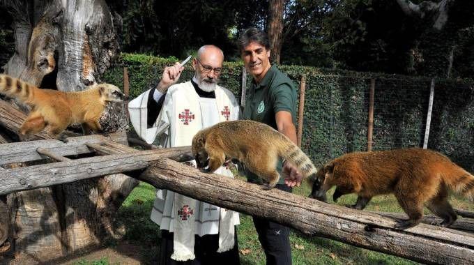 La benedizione al Bioparco (Foto Di Giovanni per Bioparco)