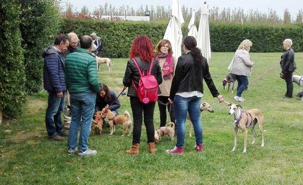 Ad ospitare l'evento è stato  il ristorante 'Bocon Divino' di Bagnacavallo (Foto Scardovi)
