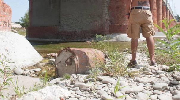La secca del Reno a Borgo Panigale lo scorso agosto