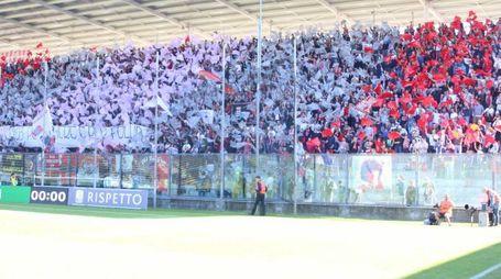 Lo stadio Zini gremito per Cremonese-Ternana