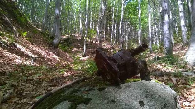 I pezzi dell'aereo ritrovati a passo delle Forbici