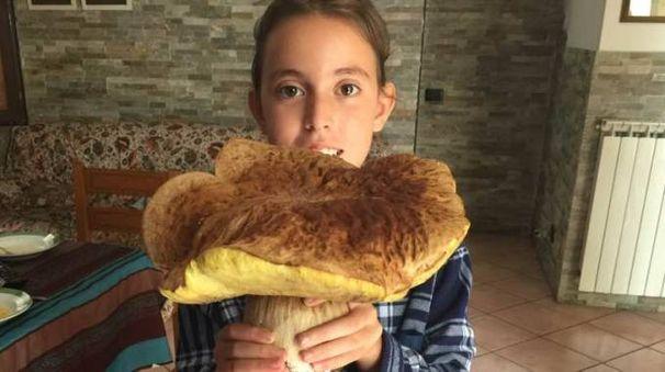 Il fungo da record mostrato dalla piccola Siria Bacchetti