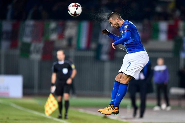 Spinazzola 6,5