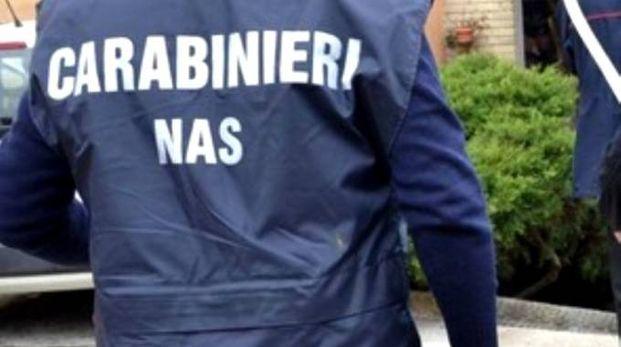 I carabinieri del Nas