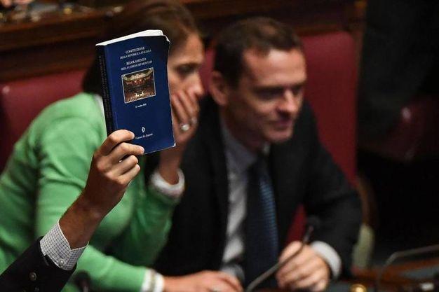 Un deputato del M5S mostra il regolamento al presidente Roberto Giachetti  - Ansa