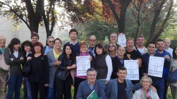 I professori che hanno sottoscritto la lettera in difesa degli alberi nel cortile