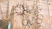 Taglio del nastro della bellissima struttura, alta otto metri e di 700 metri quadrati (che si aggiungono ai 9.000 dell'Opificio) progettata dall'architetto Mario Cucinella e realizzata dalla bolognese Nbi del gruppo Astaldi (Foto Schicchi)
