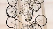 Prende forma la 'Città per la conoscenza e la cultura' all'Opificio Golinelli (Foto Schicchi)