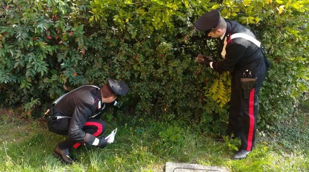 I carabinieri della Compagnia di Gardone Valtrompia cercano l'hashish