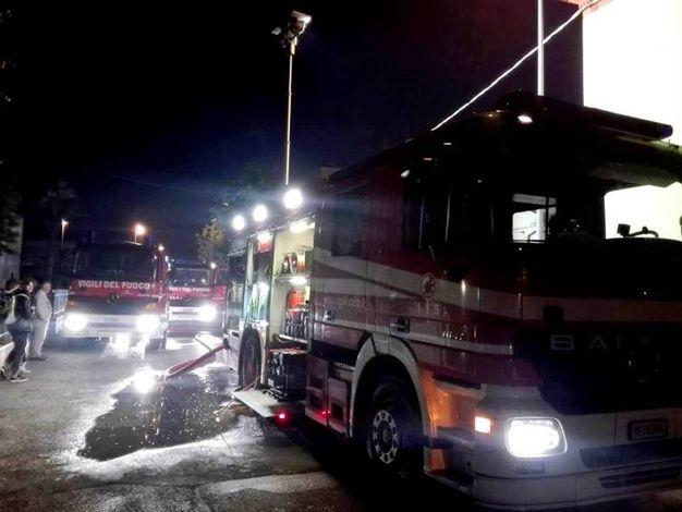 Sul posto sono intervenuti sei mezzi dei vigili del fuoco (Foto Scardovi)