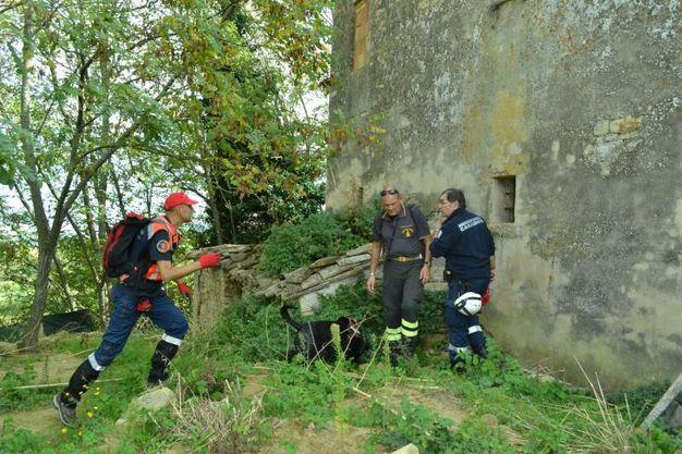 Da Arcevia, San Benedetto e Jesi sono arrivate le prime segnalazioni (Foto Ferreri)