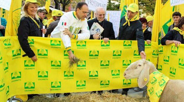 manifestazione G7 agricoltura