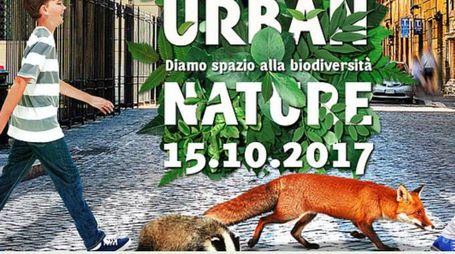 """Logo dell'iniziativa """"Urbane Nature"""""""