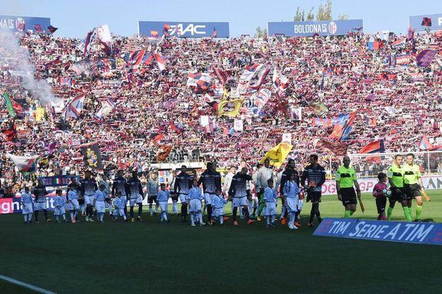 Le squadre entrano al Dall'Ara (foto Schicchi)