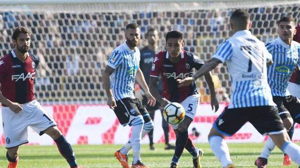 Bologna-Spal 2-1, FotoSchicchi