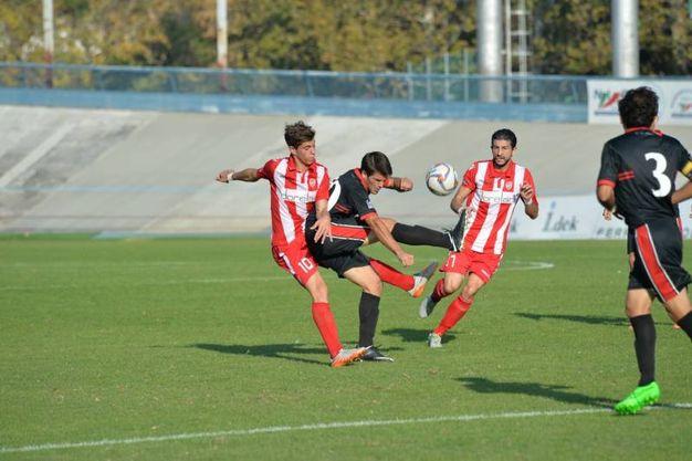 Un'azione del match in casa di Forlì  (foto Frasca)