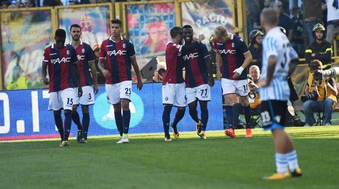 Un momento della partita fra Bologna e Spal finita 2-1 (foto Schicchi)