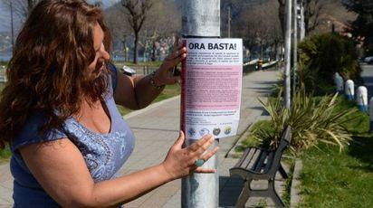 La battaglia di Nina Ferroni per la tutela dei gatti