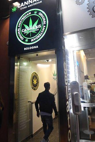 """Il primo store del marchio """"Cannabis Store Amsterdam""""  (Foto Schicchi)"""